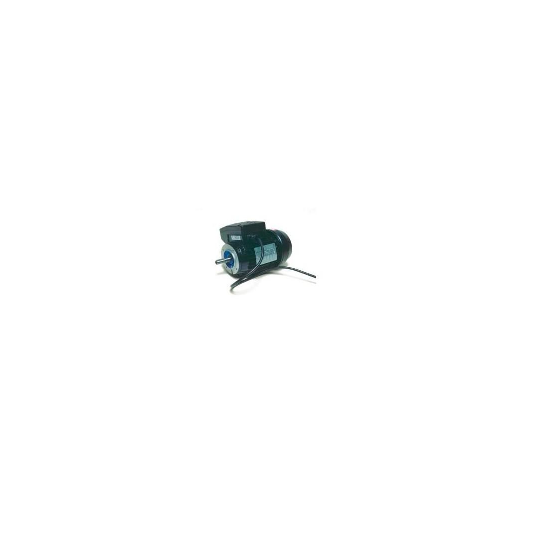 Motore aspiratore Lowara 220/1/50