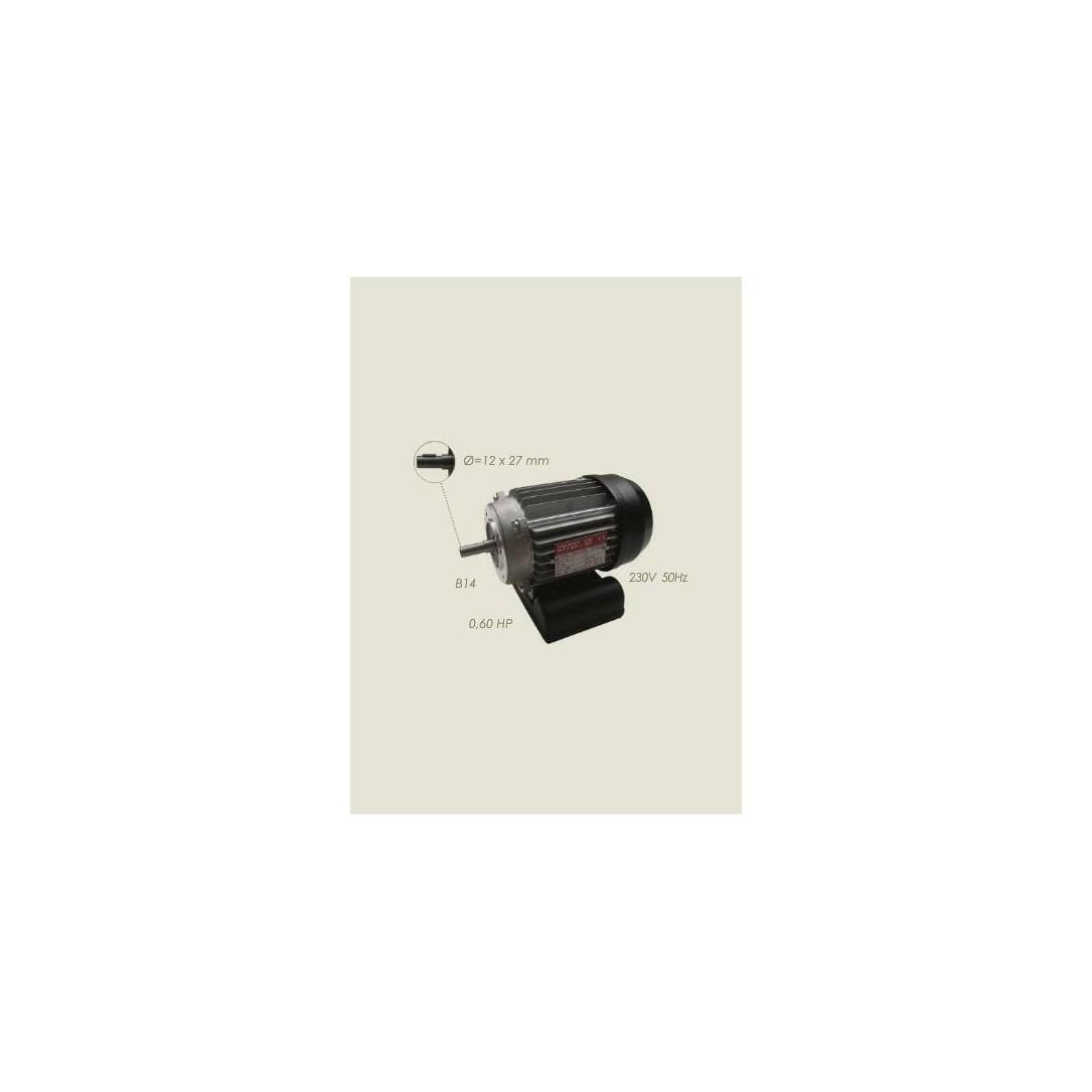 Motore aspiratore Pedrollo KML 63/2 220/1/50