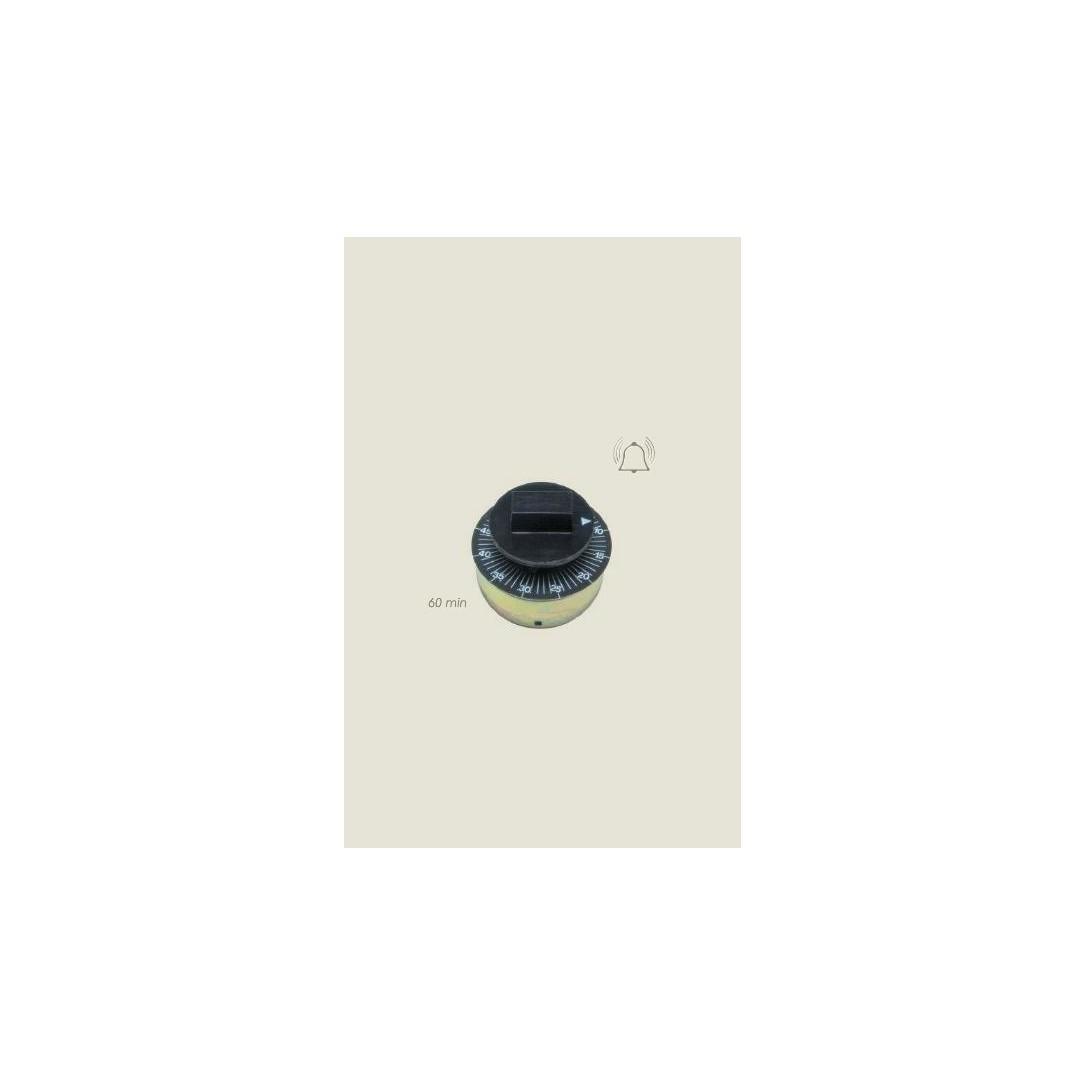 orologio manuale con suoneria 220 V